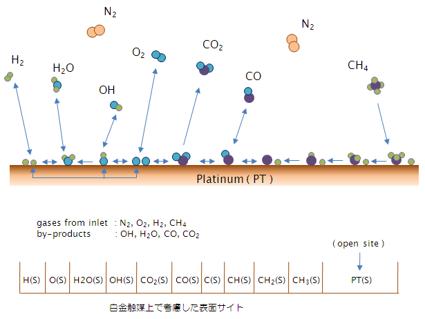 Fig. 2 反応モデルと表面サイト
